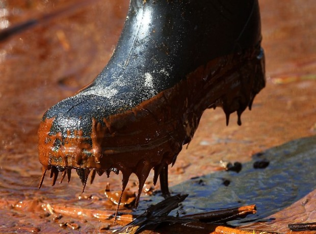 Gulf Oil Spill In Pictures
