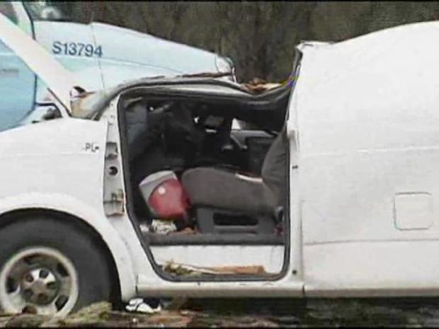Tree Falls on Van, Nearly Kills Driver - NBC Chicago