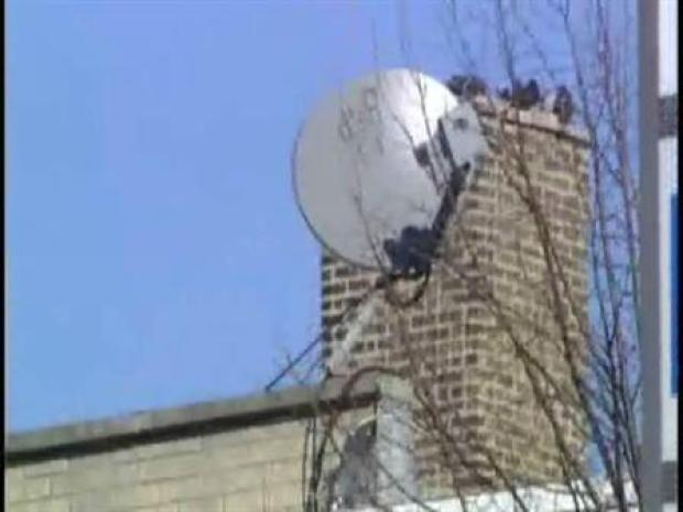 [CHI] Digital Divide:  Cable or Satellite?