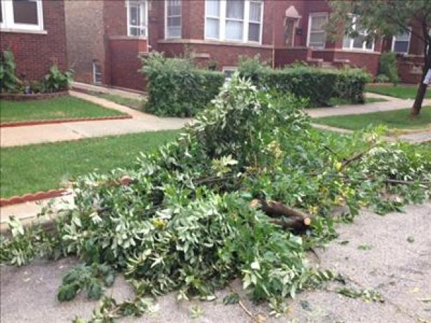 Chicagoland Area Slammed By Storm Bursts