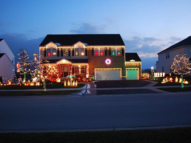 Christmas Lights Ditto in Pictures