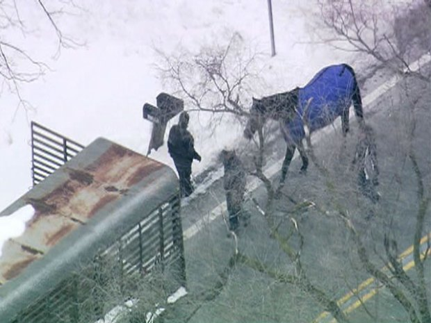[CHI] Sky5: Officials Remove Animals from South Suburban Sanctuary