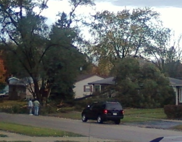 PHOTOS: Violent October Storm Cuts Across Northern Illinois