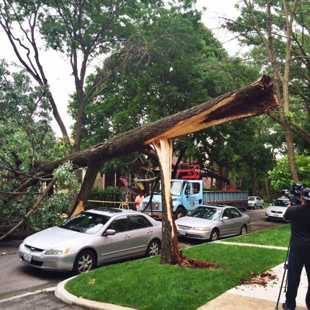 Viewer Photos: Storms Tear Through Northern Illinois