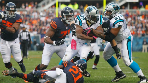 Game Photos: Bears Beat Panthers