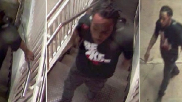 [CHI] Surveillance Photos Released of Blue Line Attacker