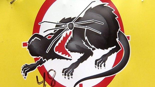 [CHI] Emanuel Responds to Proposed Rat Patrol Cuts