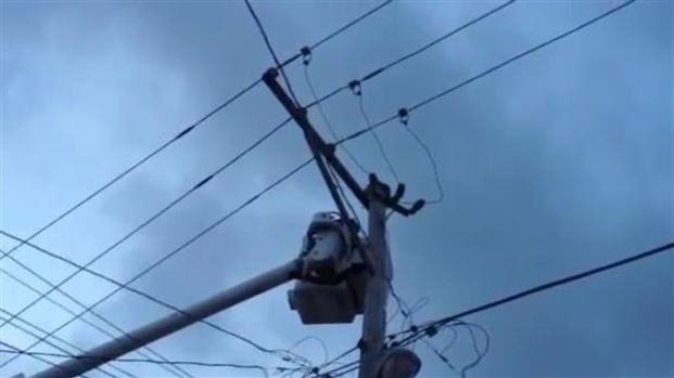 [CHI] ComEd Saves Cat Stuck on Utility Pole