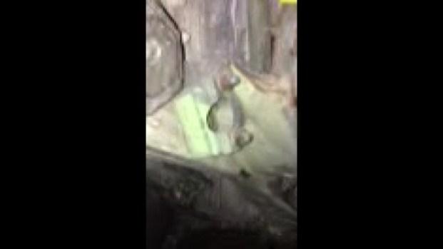 [NY] VIDEO: 9/11 Plane Part Found Near WTC