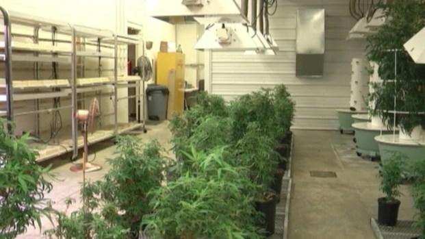 [NATL] Researchers Look For Healthier Ways to Consume Medical Marijuana