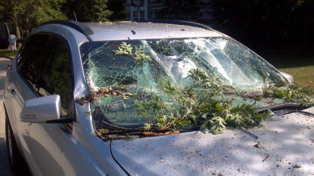 Photos: July 22 Storm Damage