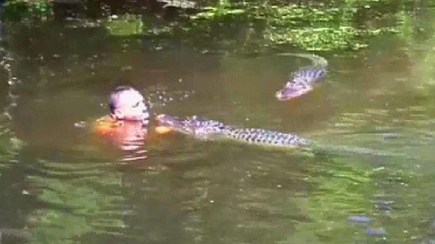[NATL] Tourist Video Captures Gator-Feeding Frolic