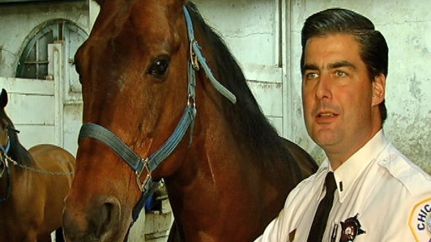 [CHI] Vandals Attack Chicago Police Horses