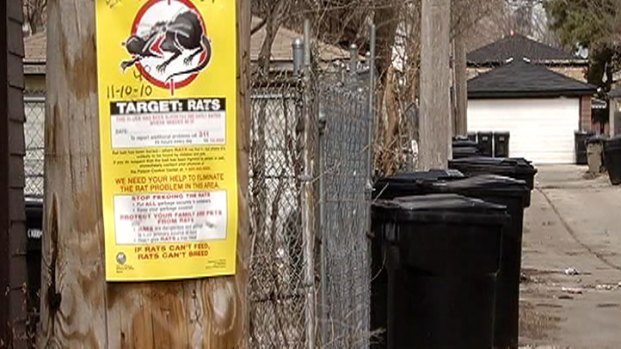 [CHI] Plan Shifts Rat Patrol Crews to Garbage Duty