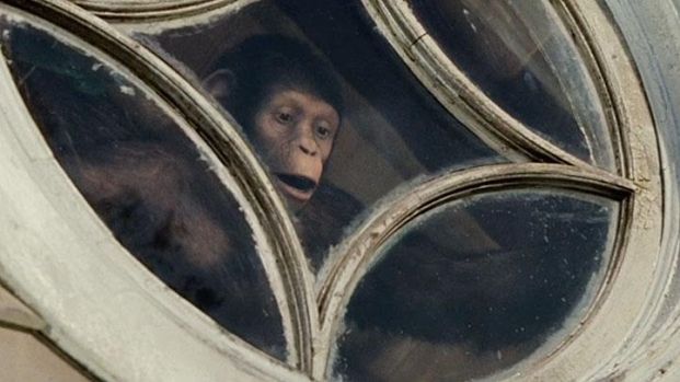 """[NATL] """"Rise of the Planet of the Apes"""""""