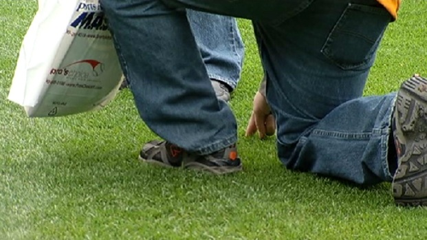 """[CHI] White Sox """"Sodfather"""" Hosts Turf Clinic"""