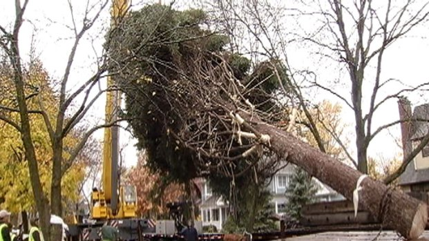 [CHI] Spangler Family Explains Why They Offered Up Tree