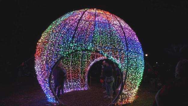 'Holiday Magic' Underway at Brookfield Zoo Lights Fest