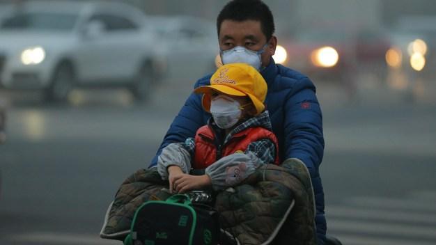 Climate Change Damaging Children's Health, Officials Warn