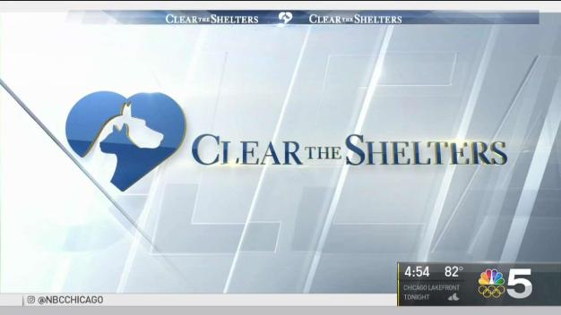 Clear the Shelters Set for This Weekend