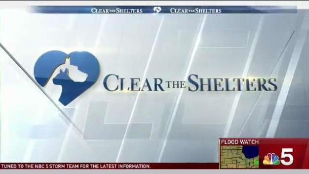 Clear the Shelters: Saturday, July 22, 2017