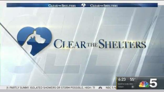 Clear the Shelters: Sunday, June 25, 2017