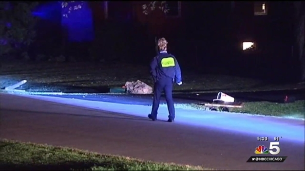 Man Killed in Hit-and-Run While Getting Mail