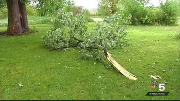 Storms Cause Damage Throughout Chicago Area