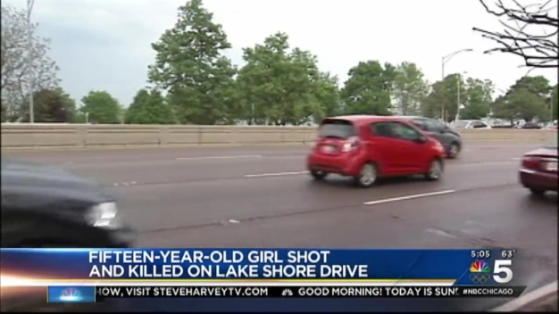 Teenage Girl Killed in Shooting on Lake Shore Drive
