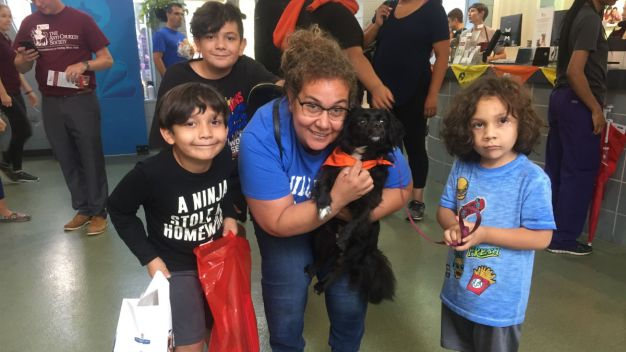 Clear the Shelters Map: Find a Chicago-Area Shelter Near You