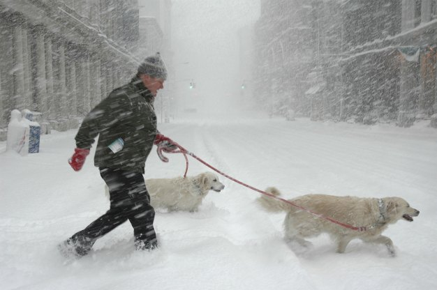 23 Winter Weather Tips for Your Home, Car and Pets