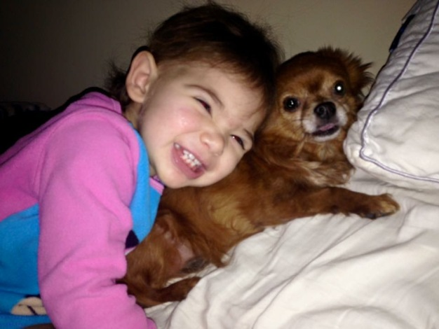 Family Pleads For Return of Beloved Dog After Car Theft