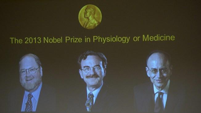2 Americans, German Win 2013 Nobel Prize in Medicine