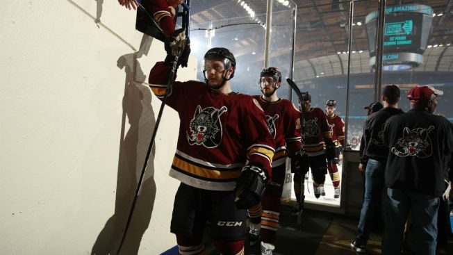 AHL: Sharing Minor League Teams Helps The Golden Knights, But What's In It For The Blues?
