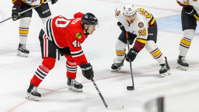 Wolves, IceHogs Set to Battle in AHL Playoffs