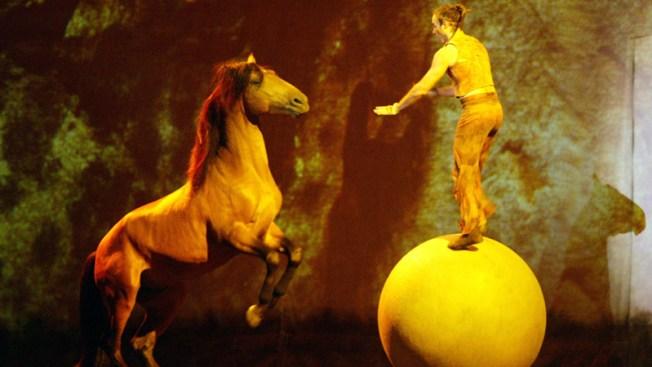 Cirque du Soleil with Horses