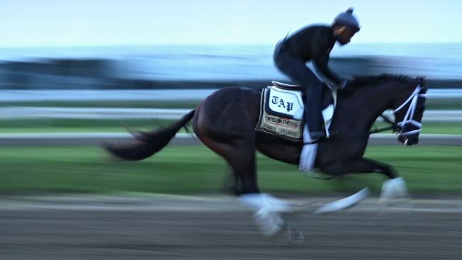 Todd Pletcher takes sure and steady approach to Preakness