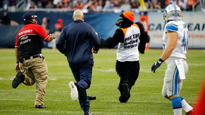 Person in Gorilla Suit, 'All Lives Matter' Shirt Runs on Field During Bears Game