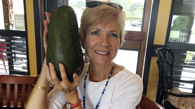 Holy Guacamole! Hawaii Woman Seeks Record for Huge Avocado 'as Big as My Head'
