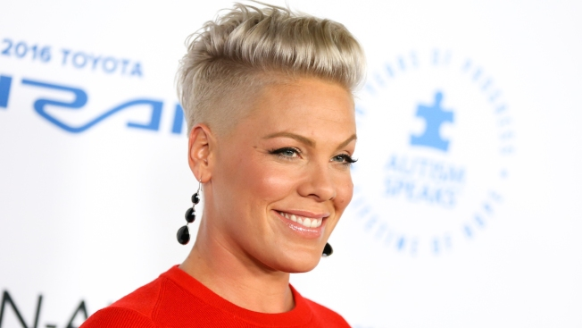 Pink Named UNICEF Ambassador in Fight to End Child Malnutrition