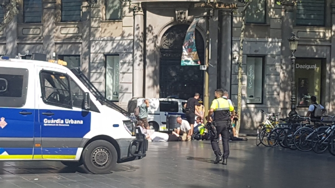 Injuries reported as van crashes into crowd in Barcelona