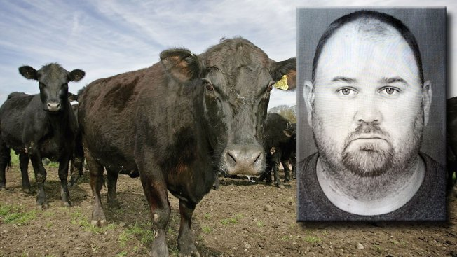 Man Steals $200K in Livestock From Sick Rancher: Officials