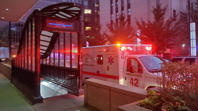 Blue Line Trains Run With Delays After 'Medical Emergency' on Tracks