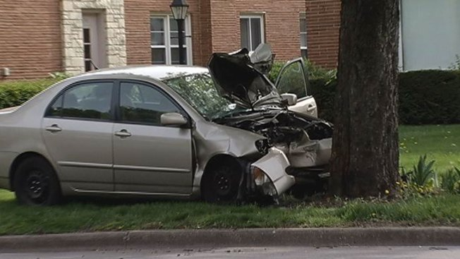 Woman Killed in Head-On Crash Into Tree