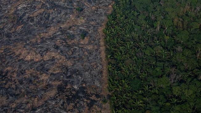 Brazilian Firefighters Toil in Amazon Region Hazy With Smoke