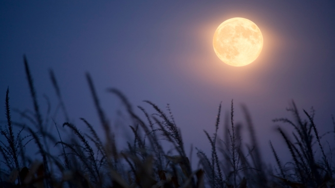 Rare Full Harvest 'Micromoon' Will Rise on Friday the 13th
