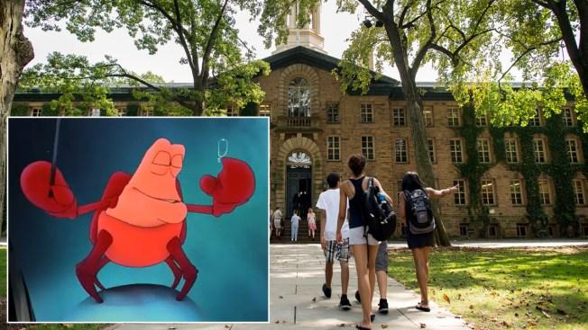 C'mon, Chicago – Let's Bring the Mini Picasso Home!