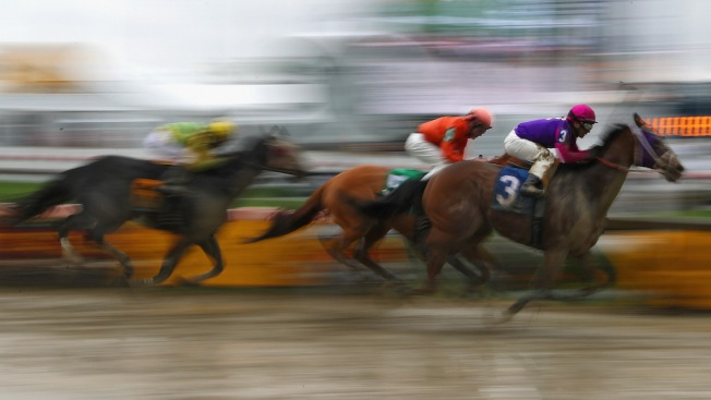 2 Horses Die in First 4 Races on Preakness Day Undercard
