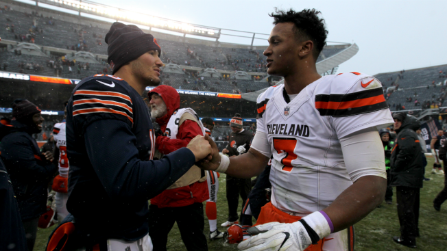 Bears Beat Browns, 20-3