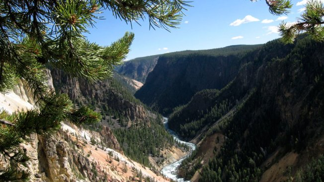 Yellowstone National Park Worker Falls to Her Death From Cliff